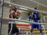 Fights 2013