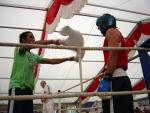 Fights 2010